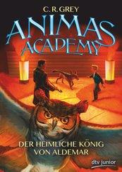 Animas Academy - Der heimliche König von Aldemar , Band 2; 109