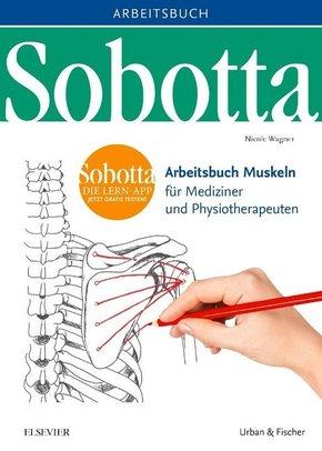 Sobotta Arbeitsbuch Muskeln