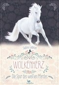 Wolkenherz - Die Spur des weißen Pferdes