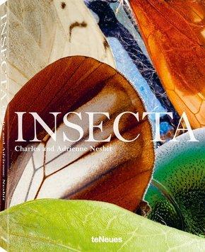 Insecta - Insekten, wie Sie sie noch nie gesehen haben