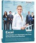 Excel - Pivot-Tabellen und -Diagramme in der Praxis