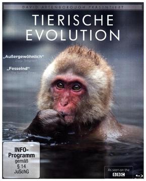 David Attenborough: Tierische Evolution, 1 Blu-ray