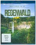 Regenwald - Rainforest 4K, 1 Blu-ray