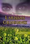 Larissas Geheimnis - Großschrift