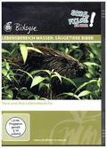 Lebensbereich Wasser: Säugetiere Biber, 1 DVD