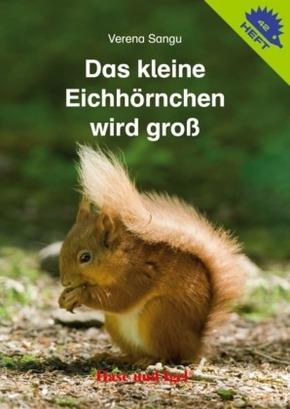 Das kleine Eichhörnchen wird groß