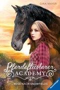 Pferdeflüsterer-Academy - Reise nach Snowfields