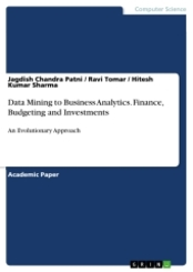 Data Mining to Business Analytics. Finance, Budgeting and Investments