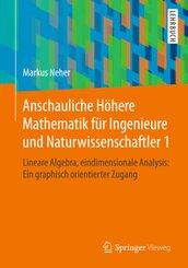 Anschauliche Höhere Mathematik für Ingenieure und Naturwissenschaftler 1