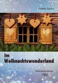 Im Weihnachtswunderland - Großdruck