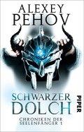 Chroniken der Seelenfänger - Schwarzer Dolch