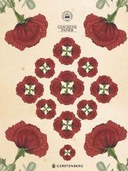 Kew Gardens Geschenkpapier-Heft - Motiv Mohnblume