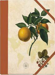Kew Gardens Sammelmappe - Motiv Orange