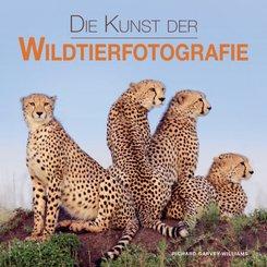 Die Kunst der Wildtierfotografie