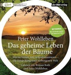 Das geheime Leben der Bäume, 1 MP3-CD