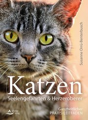 Katzen - Seelengefährten & Herzeroberer