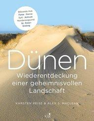 Dünen. Die Wiederentdeckung einer geheimnisvollen Landschaft