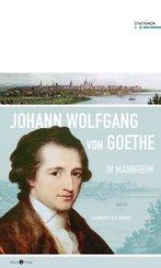 Johann Wolfgang von Goethe in Mannheim