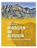 Fossilien im Alpstein