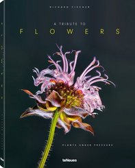 A Tribute to FLOWERS