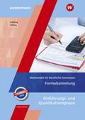 Mathematik für Berufliche Gymnasien - Ausgabe für das Kerncurriculum in Niedersachsen - Einführungs- und Qualifikationsp