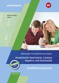 Mathematik für Berufliche Gymnasien - Ausgabe für das Kerncurriculum in Niedersachsen - Qualifikationsphase