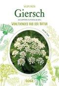 Giersch - Aegopodium Podagraria