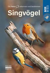 Singvögel - Die Natur erkennen und bestimmen