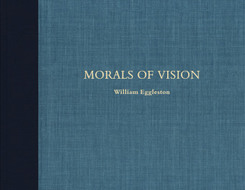 Morals of Vision