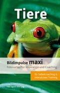 Bildimpulse maxi: Tiere