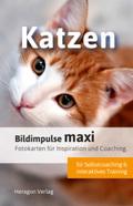 Bildimpulse maxi: Katzen