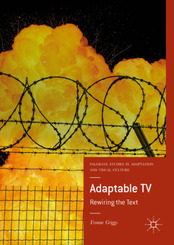 Adaptable TV