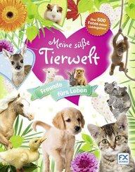 Deine süße Tierwelt - Freunde fürs Leben!