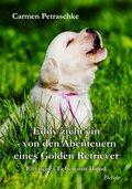 Eddy zieht ein - von den Abenteuern eines Golden Retriever