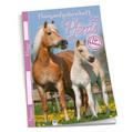 Mein Hausaufgabenheft Pferde für Schlaue