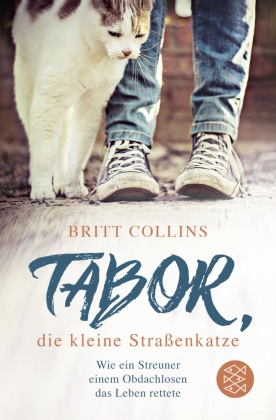 Tabor, die kleine Straßenkatze