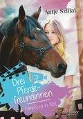 Drei Pferdefreundinnen - Filmpferd in Not