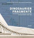 Dinosaurierfragmente