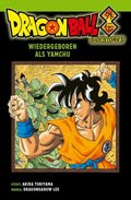 Dragon Ball Side Stories - Yamchu