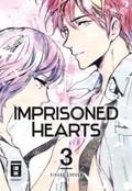 Imprisoned Hearts - Bd.3