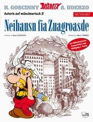 Asterix Mundart Münchnerisch - Neihausn fia Zuagroasde