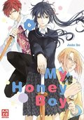 My Honey Boy - Bd.6