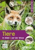 Tiere im Wald & auf der Wiese