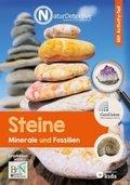 Steine, Minerale und Fossilien