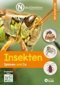 Insekten, Spinnen und Co.