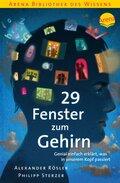 29 Fenster zum Gehirn