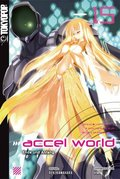 Accel World - Ende und Anfang