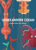 Unbekannter Ozean