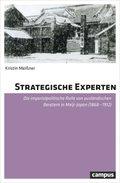 Strategische Experten
