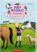 Pony-Internat Kirschental - Ein Glückspferd für Emma
